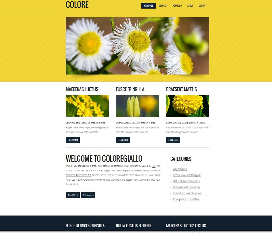 Html Css ile Web Sayfası Yapımı Uygulama 2